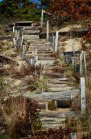 Driftwood Stairs